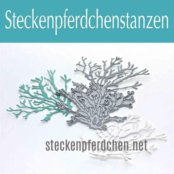 Steckenpferdchenstanze Unterwasserwelt