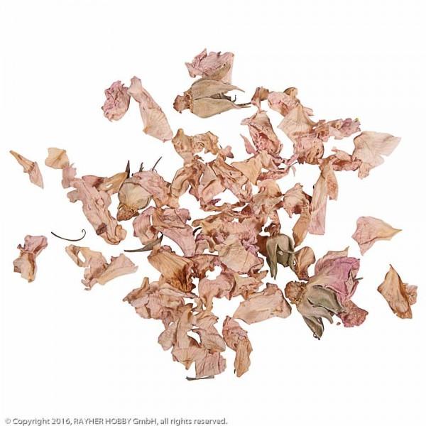 Rayher Blüten Rosenblütenblätter hell