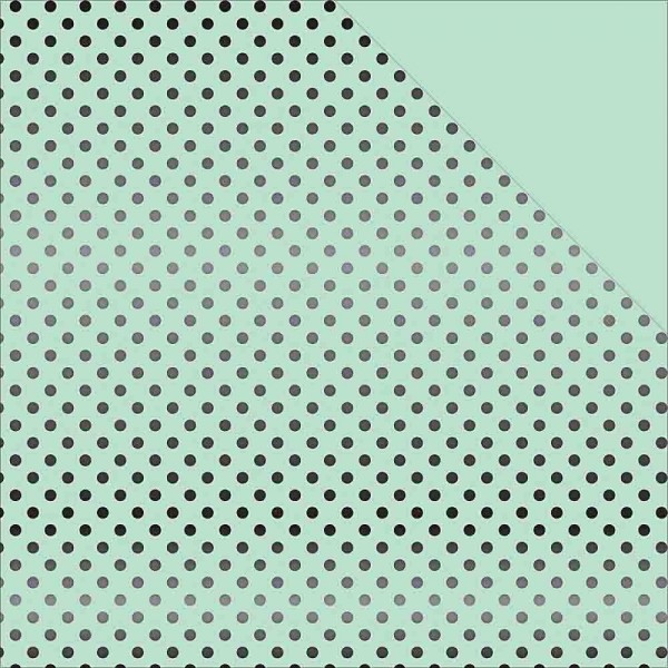 Echo Park Dots and Stripes black foil mint