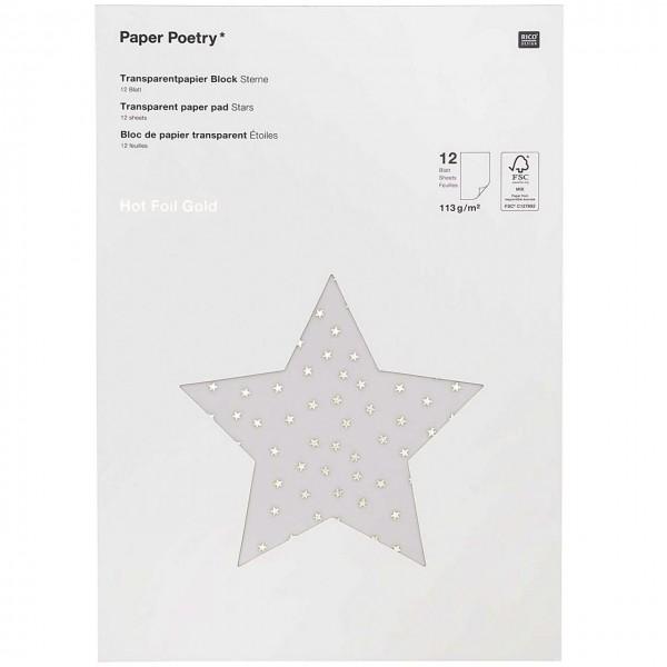 Rico Transparentpapier Block Sterne gold