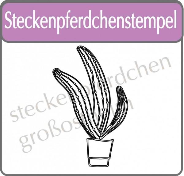 Steckenpferdchenstempel Kaktus 5