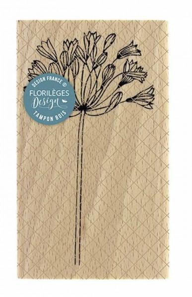 Florileges Holzstempel Agapanthe