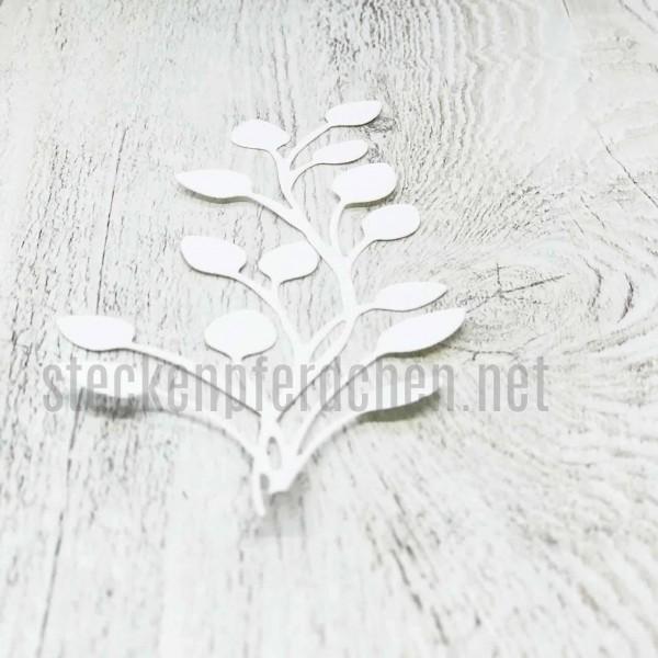 Steckenpferdchenstanze Blattpflanze