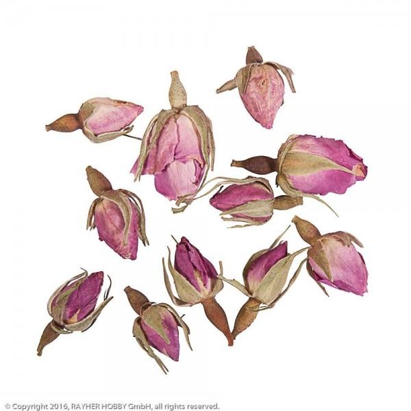 Rayher Blüten Rosenknospen ganz rosa