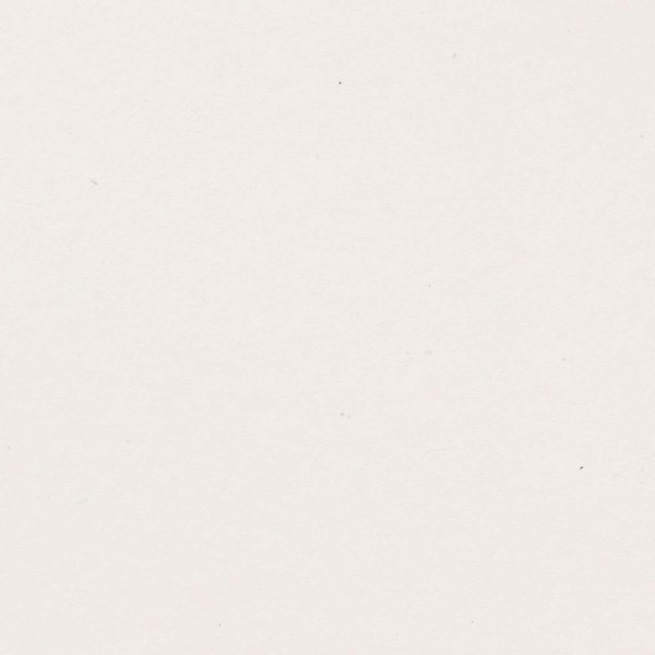 Bazzill Speckle Cardstock - White Sands