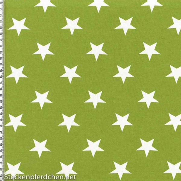 Jerseystoff Vicente Sterne Grün