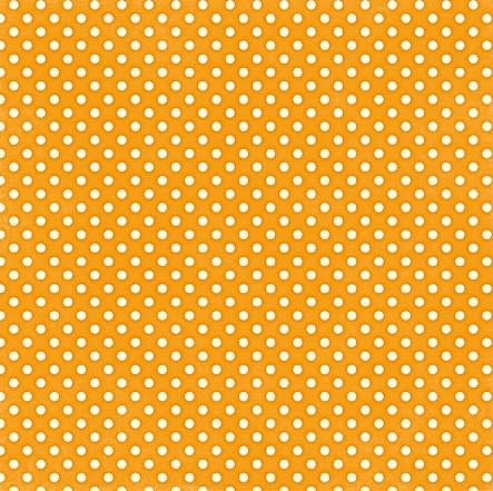 Echo Park Dots ans Stripes Tangerine