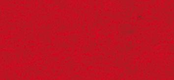 Filzzuschnitte rot