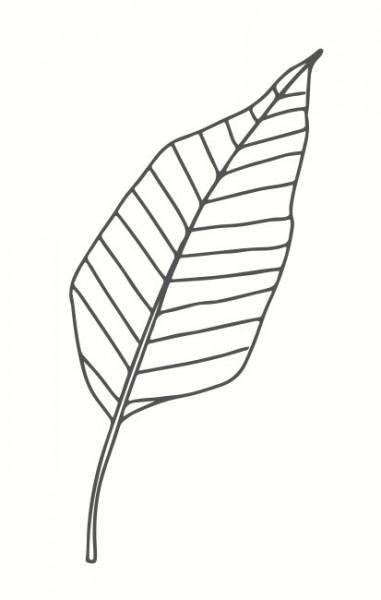 May & Berry Holzstempel - Blatt stylisiert
