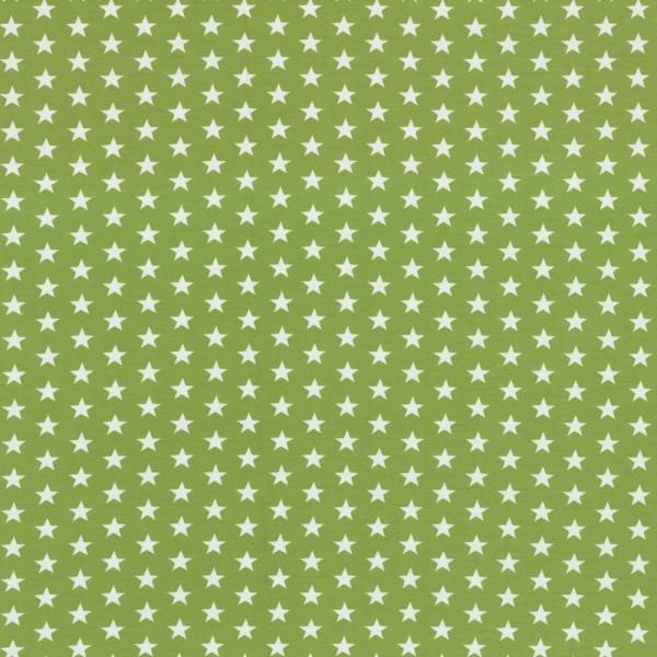 Baumwolljersey Verena Sterne grün/weiß