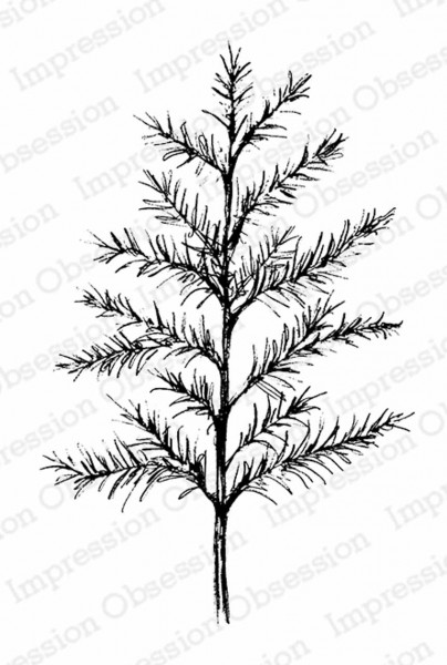 Impression Obsession Holzstempel Sketched Pine Tall