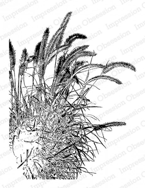 Impression Obsession Holzstempel Fall Grass